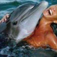 DolphinJohn